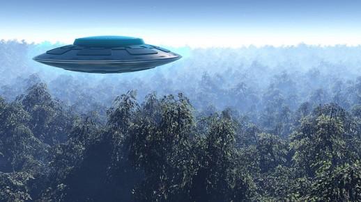 2015: le 04/08 à Environ 14h30 - Une soucoupe volante -  Ovnis à Belgique, Gilly -  - Page 3 UFO-Gralien-Trees-518x291
