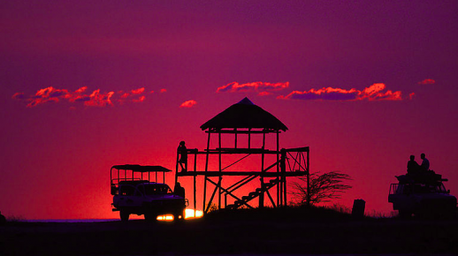 sunset-safari